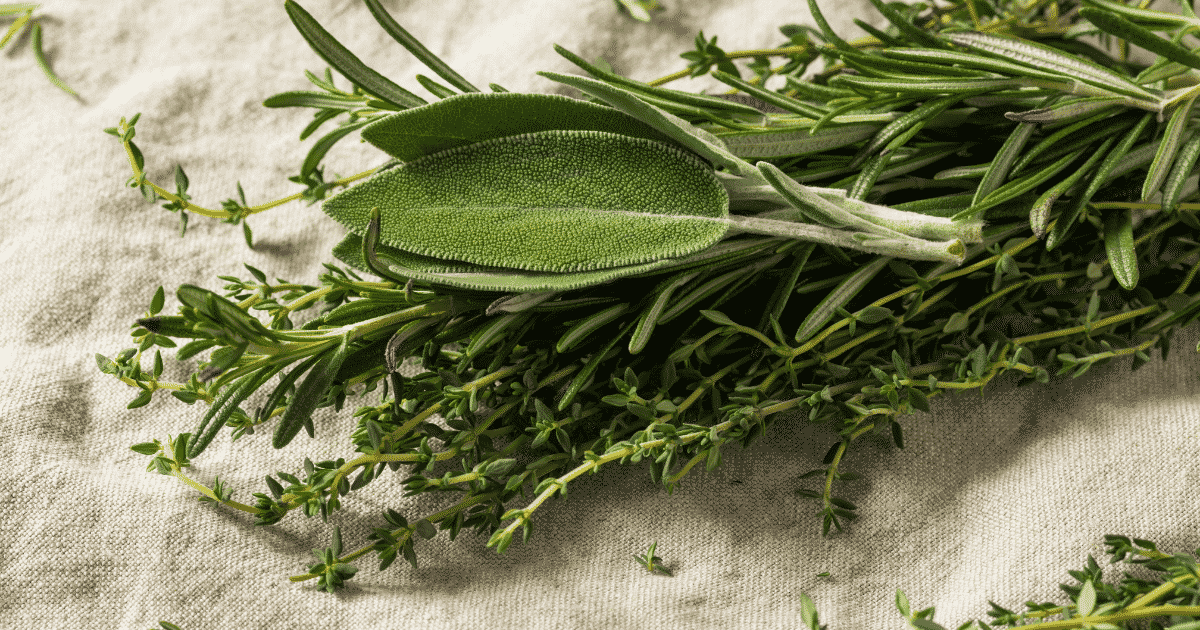 photo of herbs